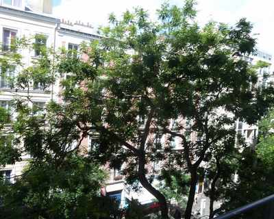 Vente Appartement 29 m² à Paris 231 000 €