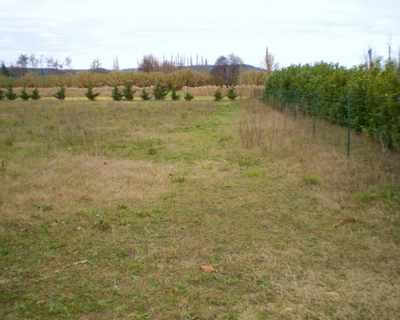 Vente Terrain à bâtir 2734 m² à Saint-Paul-Trois-Chateaux 220 000 €