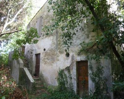 Vente Maison 40 m² à Nimes 165 000 €