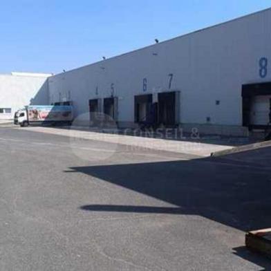 Bureau 8150 m²
