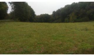 Achat terrain  Paulin (24590) 40 000 €