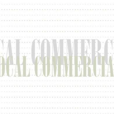 Commerce 83 m²