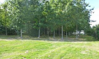 Achat terrain  Albi (81000) 82 500 €