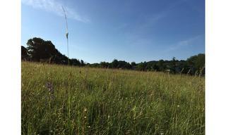 Achat terrain  Saint-André-d'Allas (24200) 27 000 €