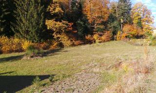 Achat terrain  Étueffont (90170) 73 000 €