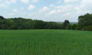 Achat terrain  Saint-Yrieix-la-Perche (87500) 32 000 €