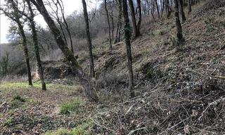 Achat terrain  Valojoulx (24290) 20 000 €