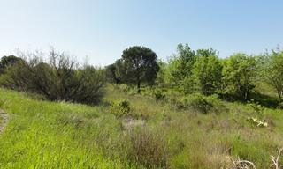 Achat terrain  Bessan (34550) 15 000 €