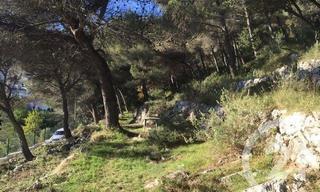 Achat terrain  Beausoleil (06240) 1 150 000 €
