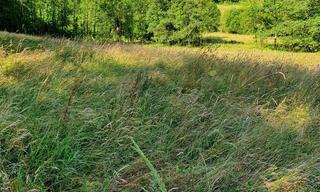 Achat terrain  Escoubès-Pouts (65100) 71 000 €