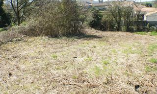 Achat terrain  Antigny (85120) 28 000 €