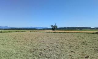 Achat terrain  Dannemarie (68210) 103 000 €