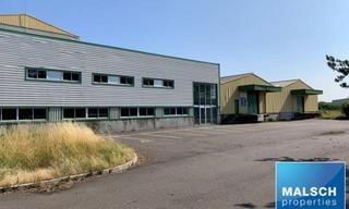 Achat local industriel  Torcy (71210) 1 836 000 €