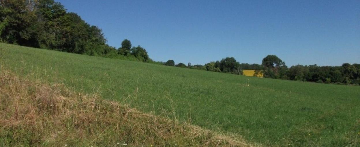Achat terrain  Vensat (63260) 48 900 €