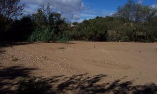 Achat terrain  Ginestas (11120) 68 500 €