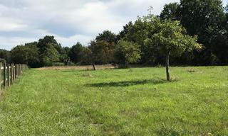 Achat terrain  Saint-Julien-le-Faucon (14140) 35 000 €