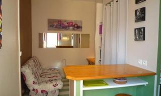 Location appartement 1 pièce Lyon 7 (69007) 514 € CC /mois