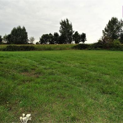 Terrain 6114 m²