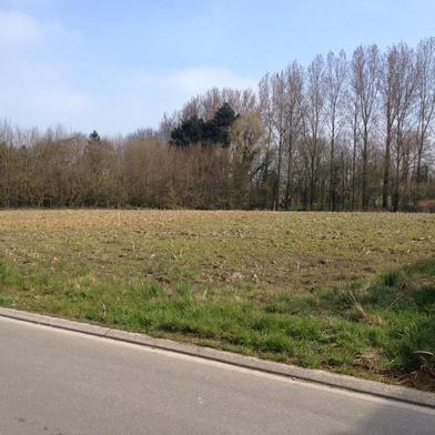 Terrain 454 m²