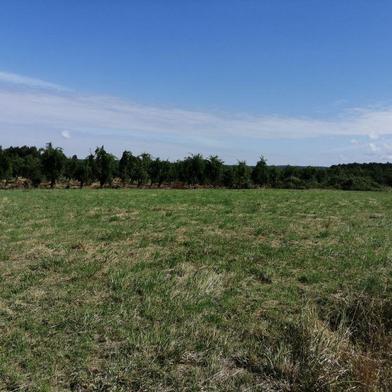 Terrain à construire 952 m²