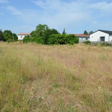 Terrain 711 m²