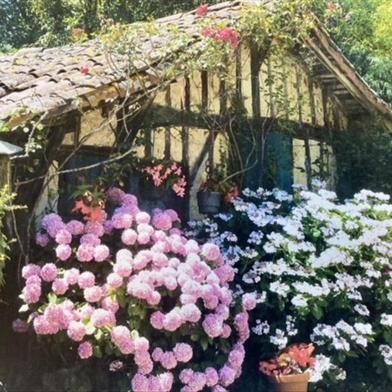 Maison 2 pièces 109 m²