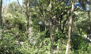 Achat terrain  Ganges (34190) 76 000 €