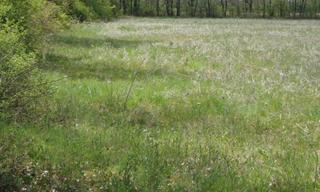 Achat terrain  Mignaloux-Beauvoir (86550) 96 300 €