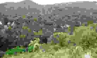 Achat terrain  Ganges (34190) 86 000 €