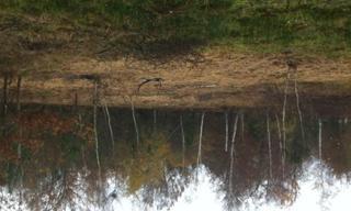 Achat terrain  Le Pian-Médoc (33290) 140 000 €