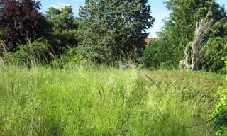 Achat terrain  Maisse (91720) 96 000 €