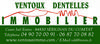 logo VENTOUX DENTELLES IMMO