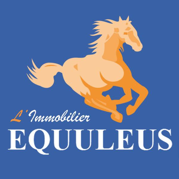 Equuleus Saint Cyr sur Loire agence immobilière Saint Cyr sur Loire 37540