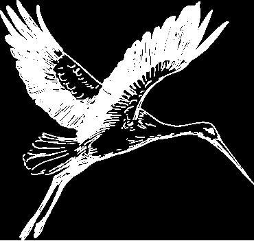 La Bourse de l'Immobilier agence immobilière Bordeaux (33000)