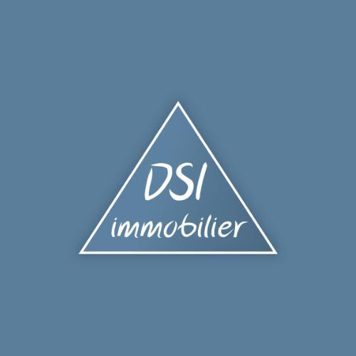 Dsi agence immobilière Villeurbanne (69100)