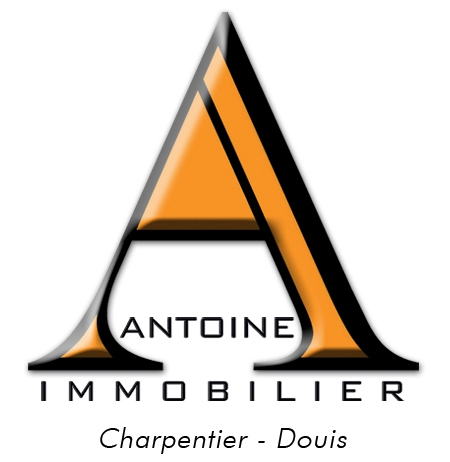 Antoine Immobilier agence immobilière Angers (49100)