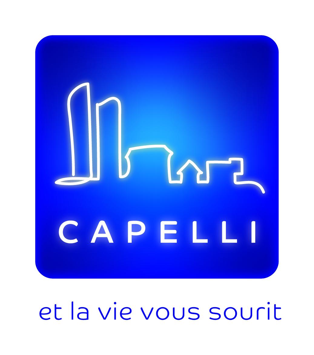 Groupe Capelli agence immobilière à CHAMPAGNE AU MONT D OR 69410