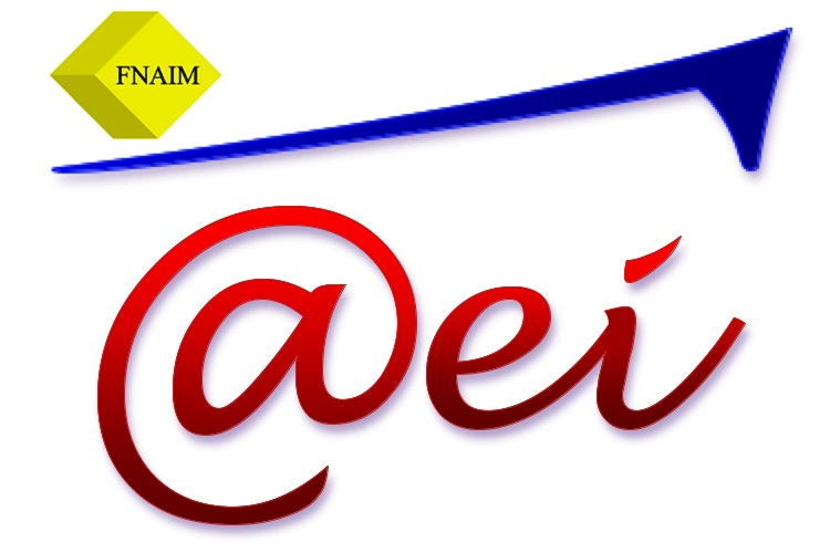 Agence Européenne Immobilière - Gien agence immobilière Nevoy 45500