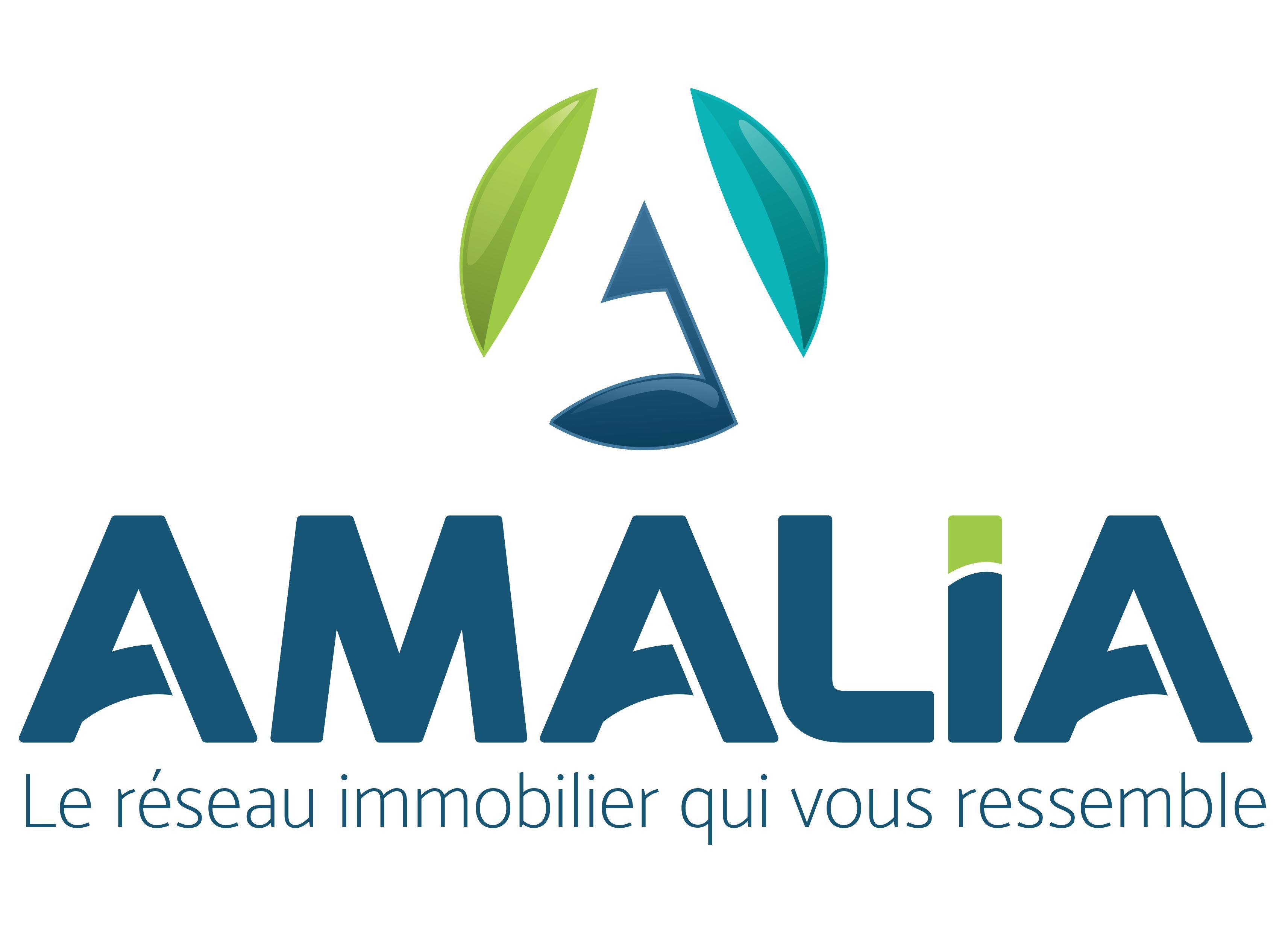 Amalia France agence immobilière Cambrai (59400)