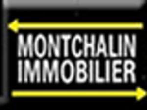 CABINET MONTCHALIN FIRMINY agence immobilière à FIRMINY 42700