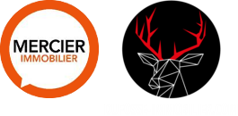 Dufossé Immobilier agence immobilière Tassin-la-Demi-Lune (69160)