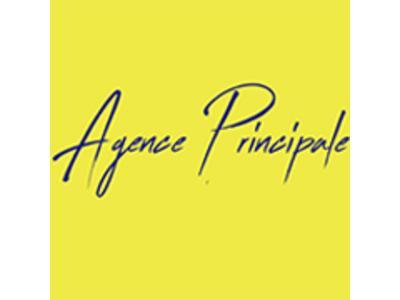 Agence Principale agence immobilière Châtellerault (86100)