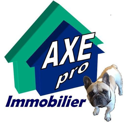 Axe Pro Immobilier agence immobilière Thouars (79100)